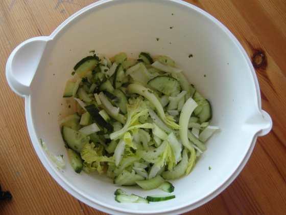 Řapíkatý celer a salát z něj